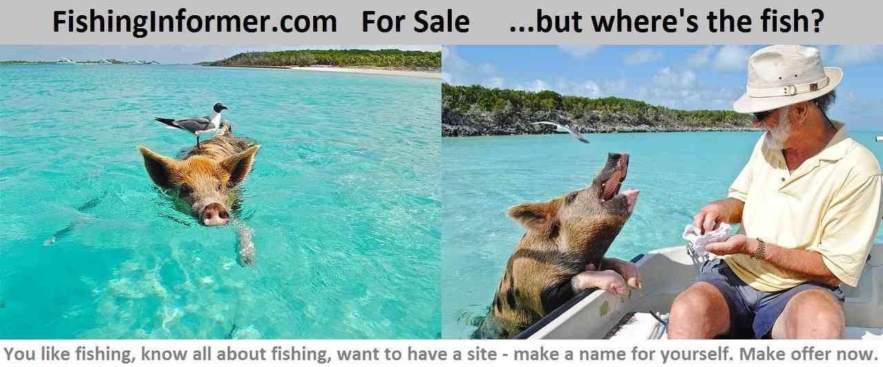 fishing informer.com for sale
